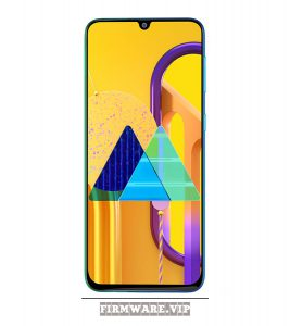 Firmware download SAMSUNG Galaxy M30s SM M307FN M307FNXXU1ASI2 9.0